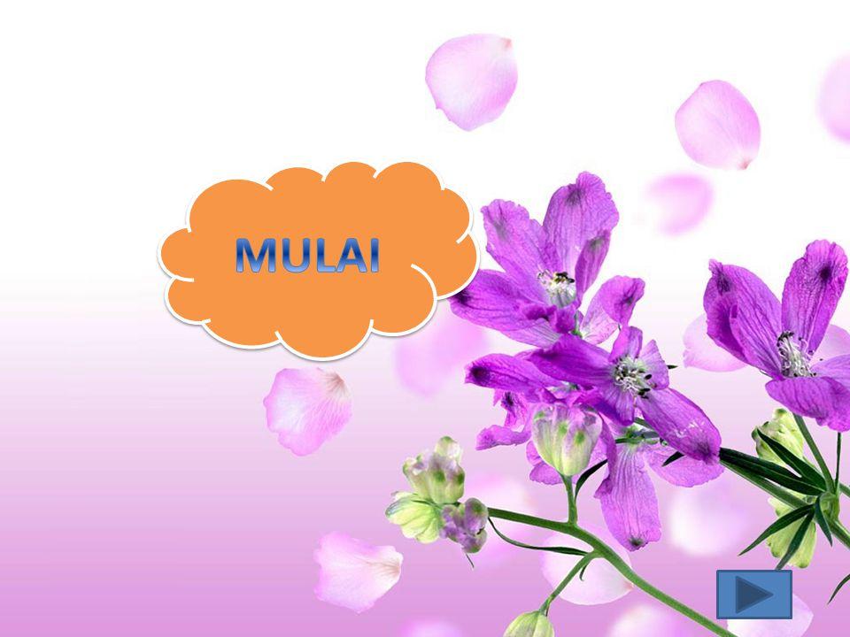 MULAI