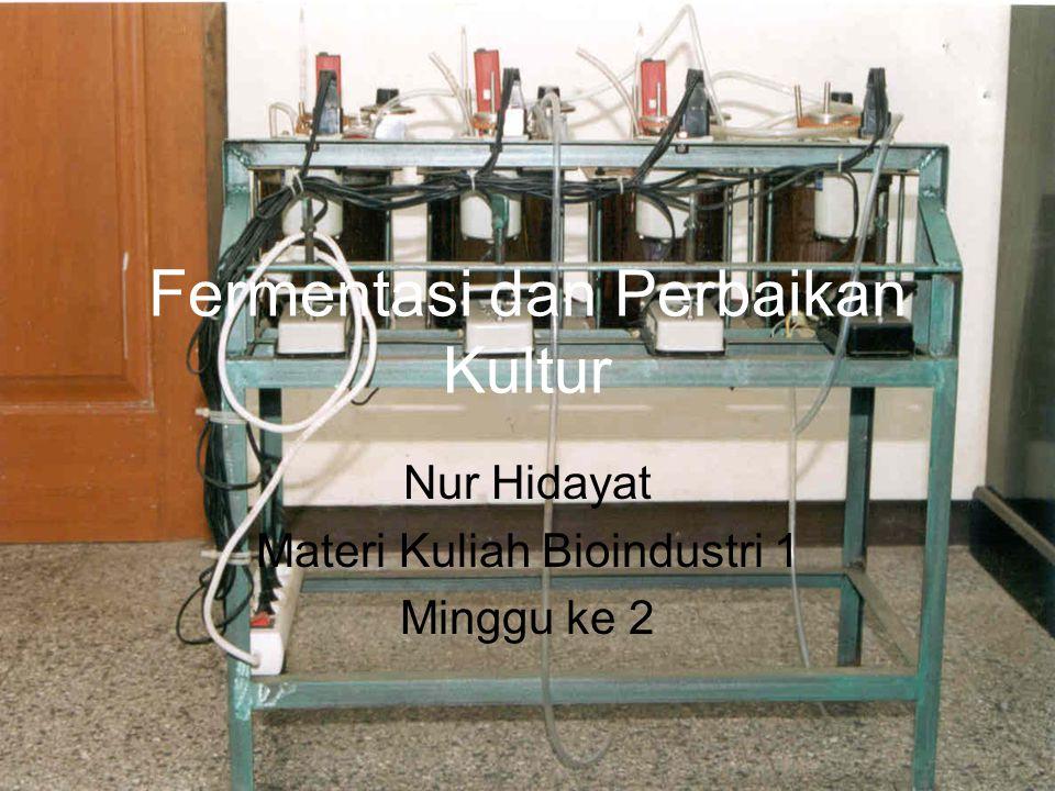Fermentasi dan Perbaikan Kultur