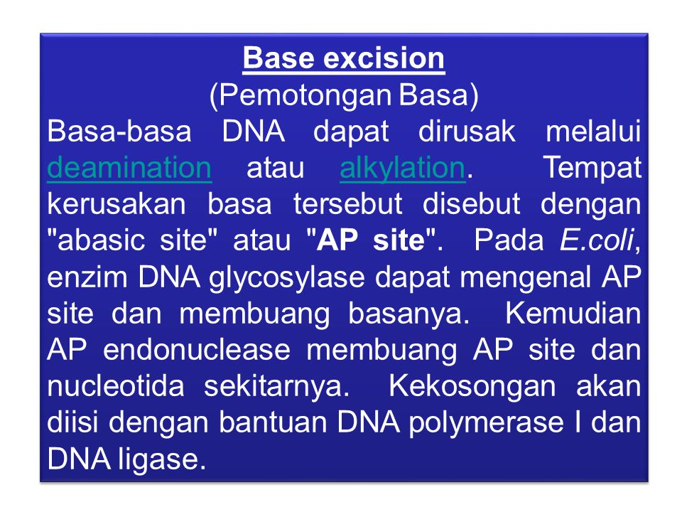 Base excision (Pemotongan Basa)
