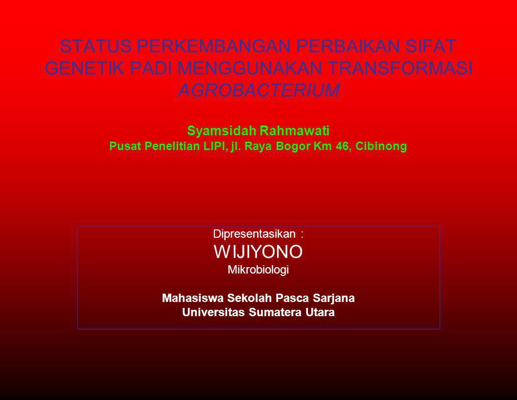Mahasiswa Sekolah Pasca Sarjana Universitas Sumatera Utara