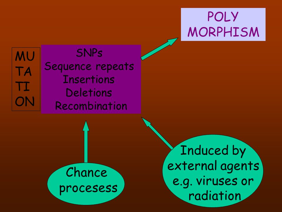POLY MORPHISM MUTATION Induced by external agents e.g. viruses or