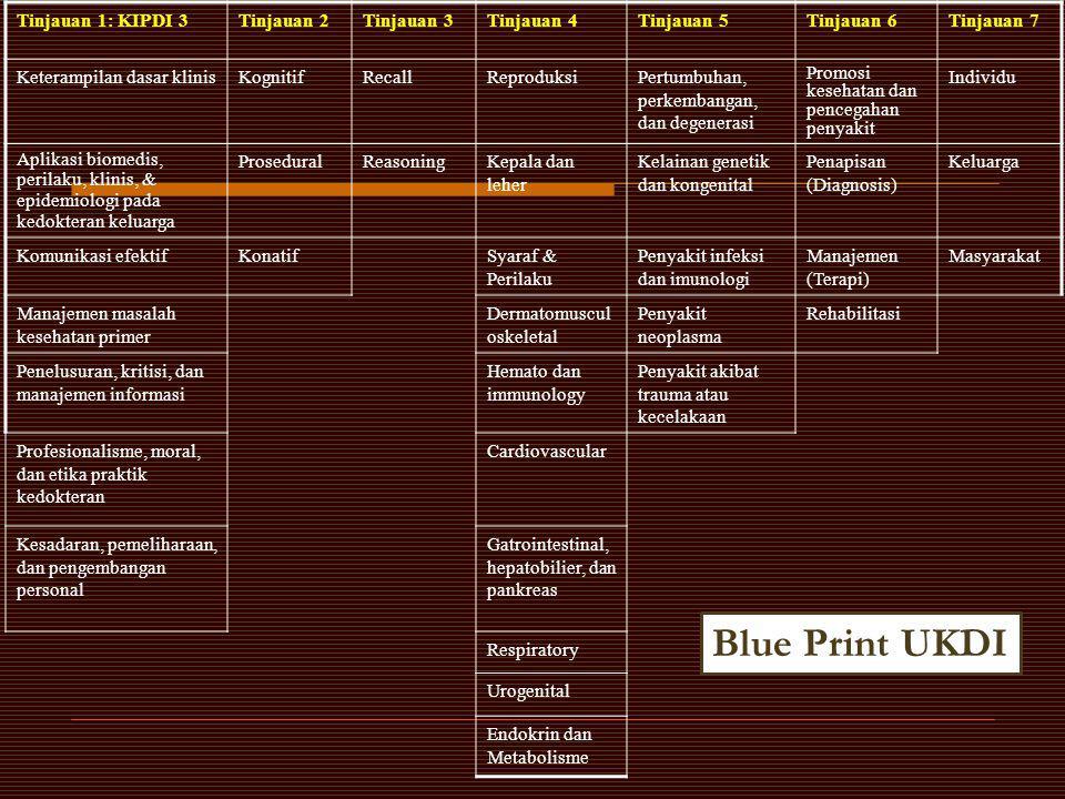 Blue Print UKDI Tinjauan 1: KIPDI 3 Tinjauan 2 Tinjauan 3 Tinjauan 4