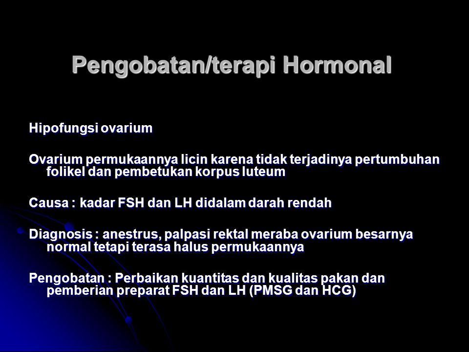 Pengobatan/terapi Hormonal
