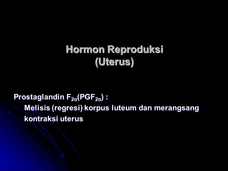 Hormon Reproduksi (Uterus)