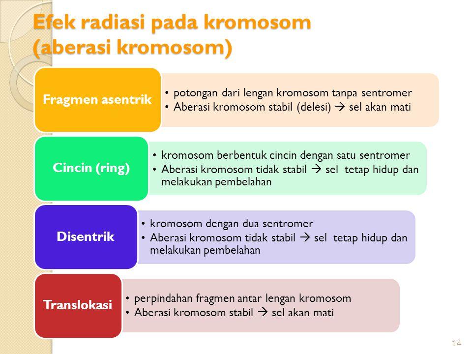 Efek radiasi pada kromosom (aberasi kromosom)