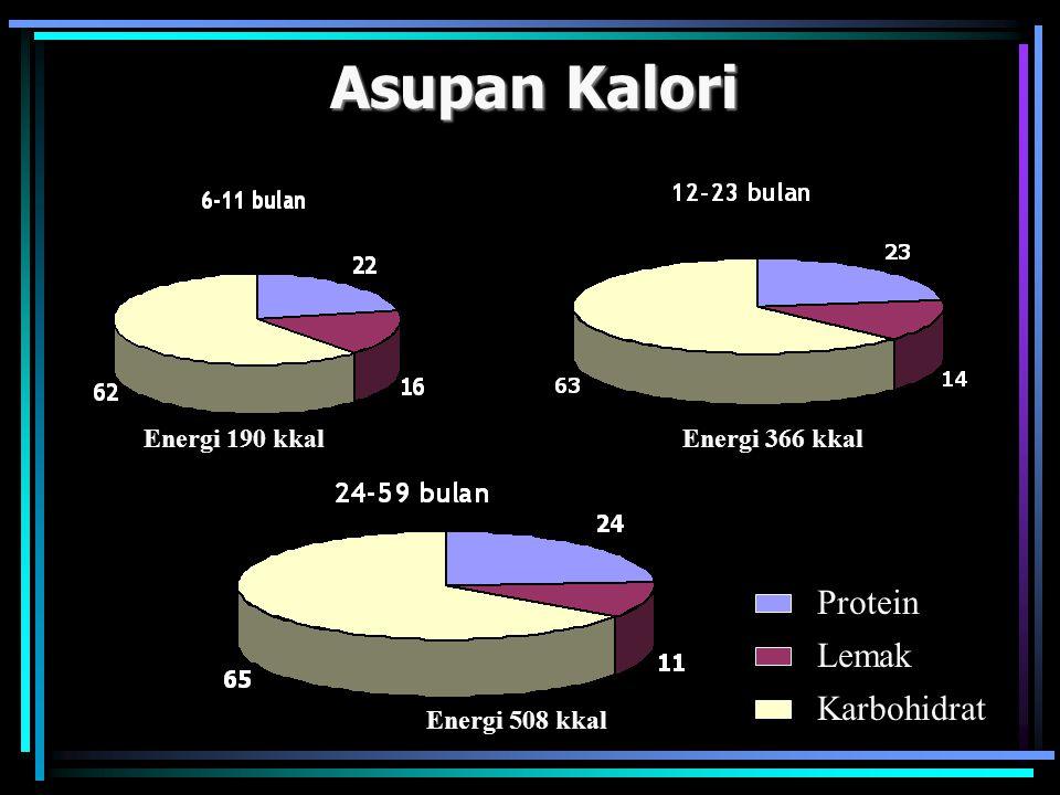 Asupan Kalori Protein Lemak Karbohidrat Energi 190 kkal