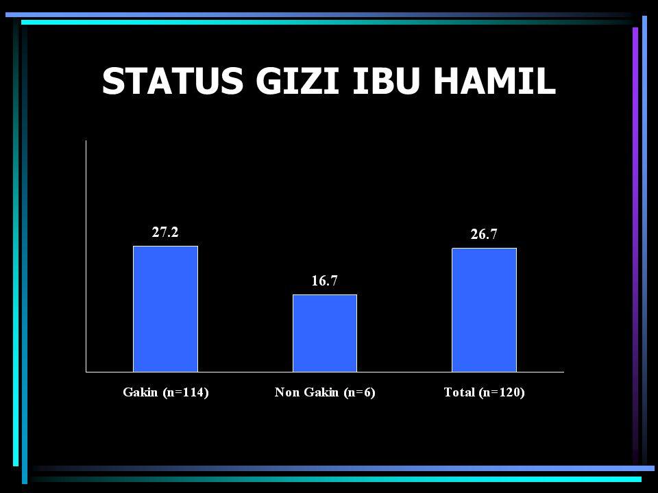 STATUS GIZI IBU HAMIL
