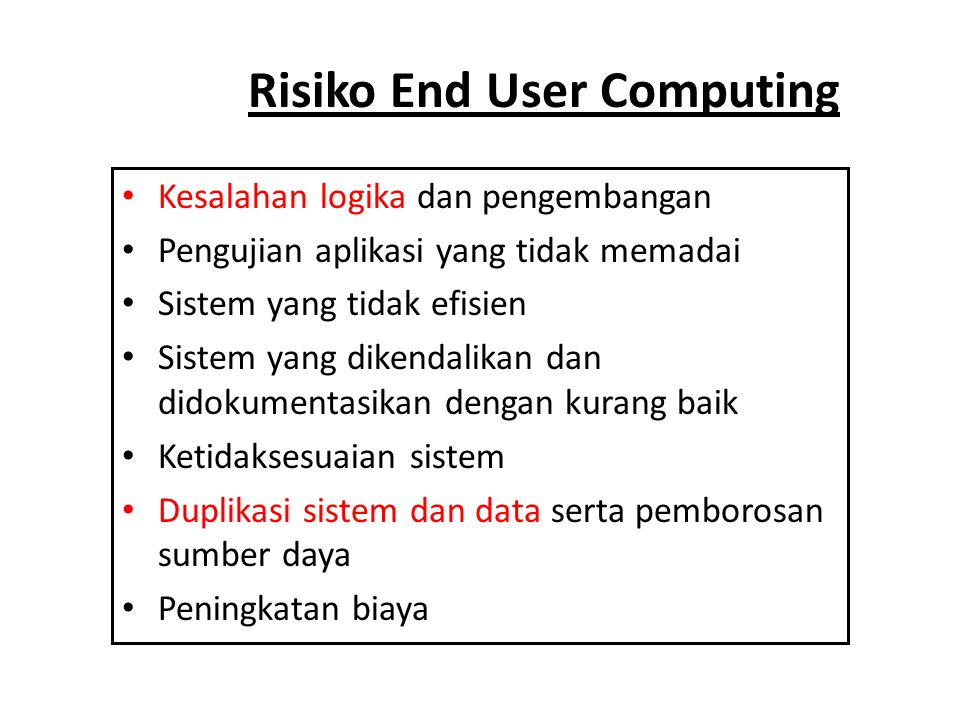 Risiko End User Computing