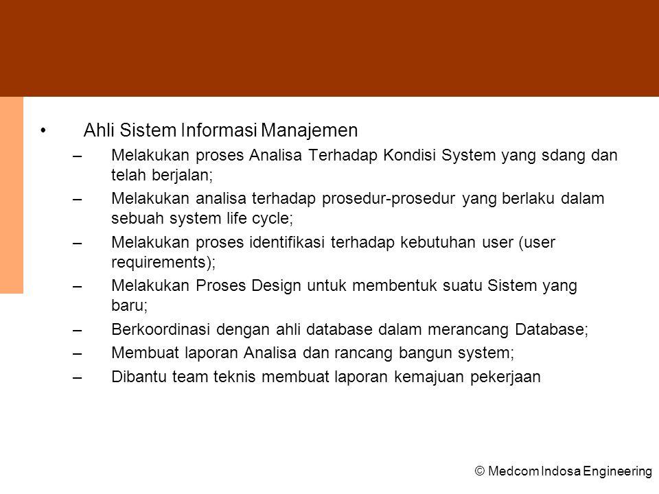 Ahli Sistem Informasi Manajemen