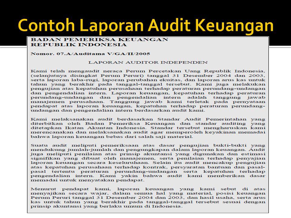 Contoh Laporan Audit Keuangan