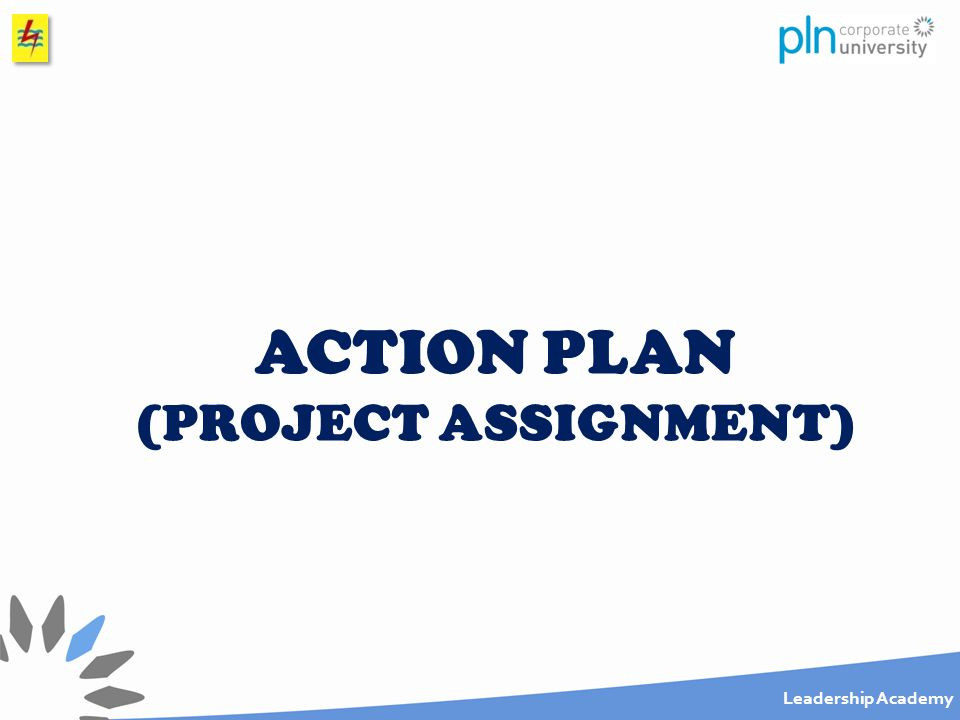 ACTION PLAN (PROJECT ASSIGNMENT)