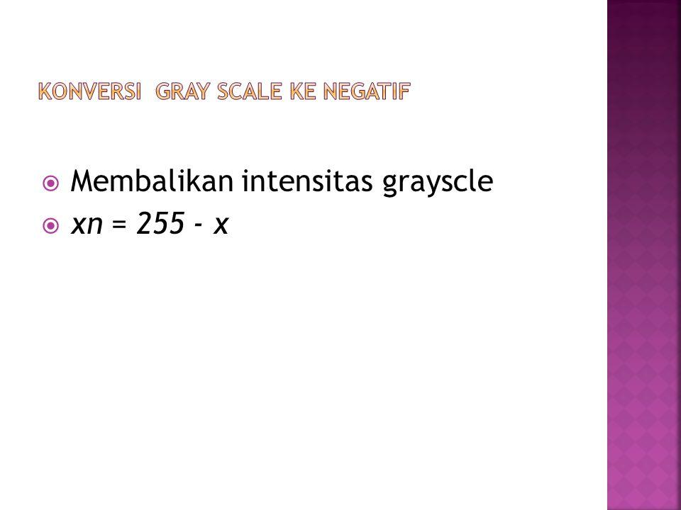 Konversi gray scale ke negatif