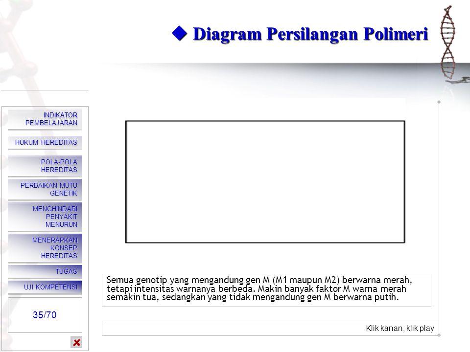  Diagram Persilangan Polimeri