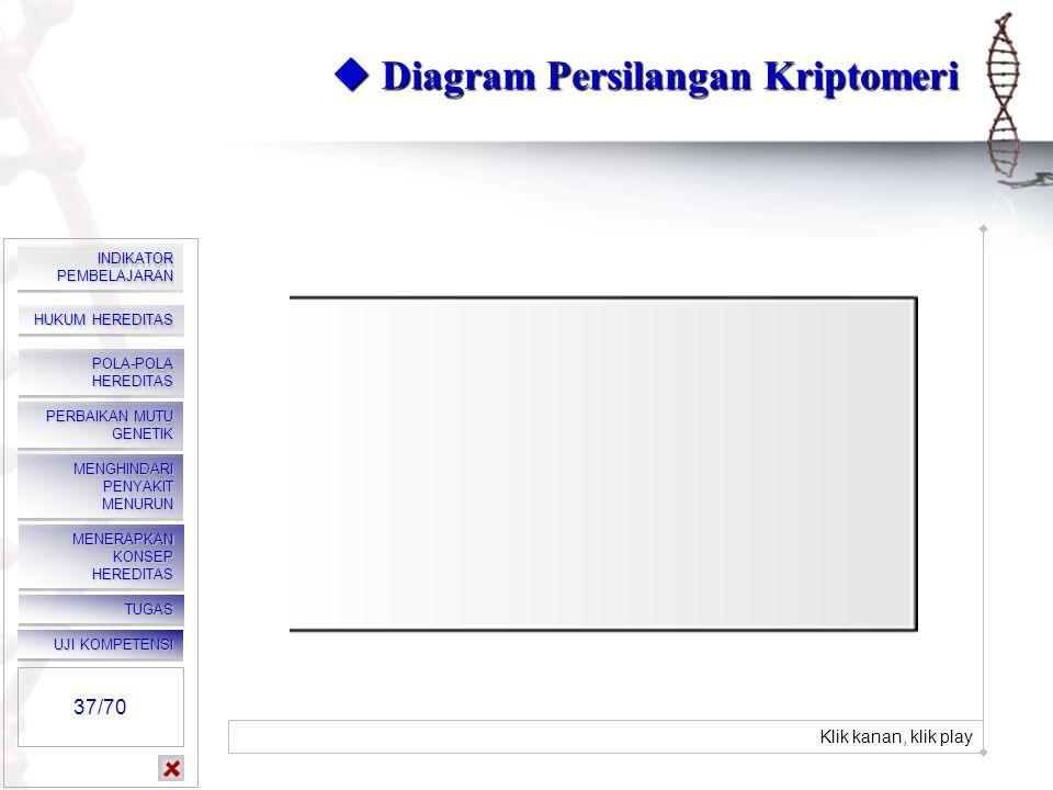  Diagram Persilangan Kriptomeri
