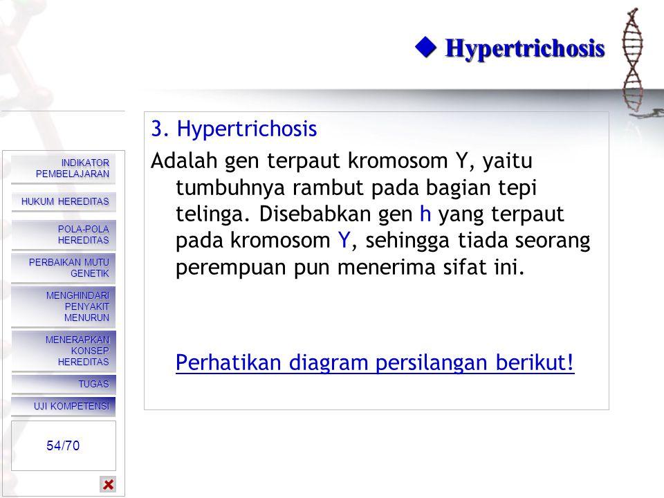  Hypertrichosis 3. Hypertrichosis