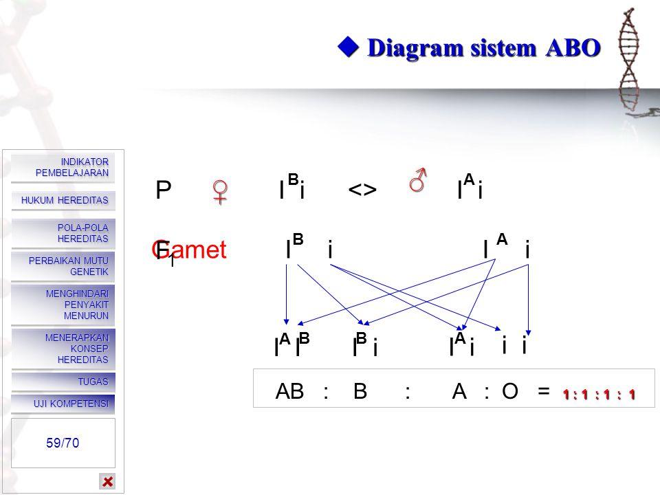  Diagram sistem ABO P I i <> I i ♂ ♀ Gamet I i I i F I I I i