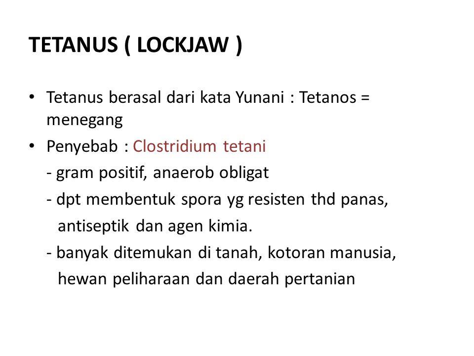 TETANUS ( LOCKJAW ) Tetanus berasal dari kata Yunani : Tetanos = menegang. Penyebab : Clostridium tetani.