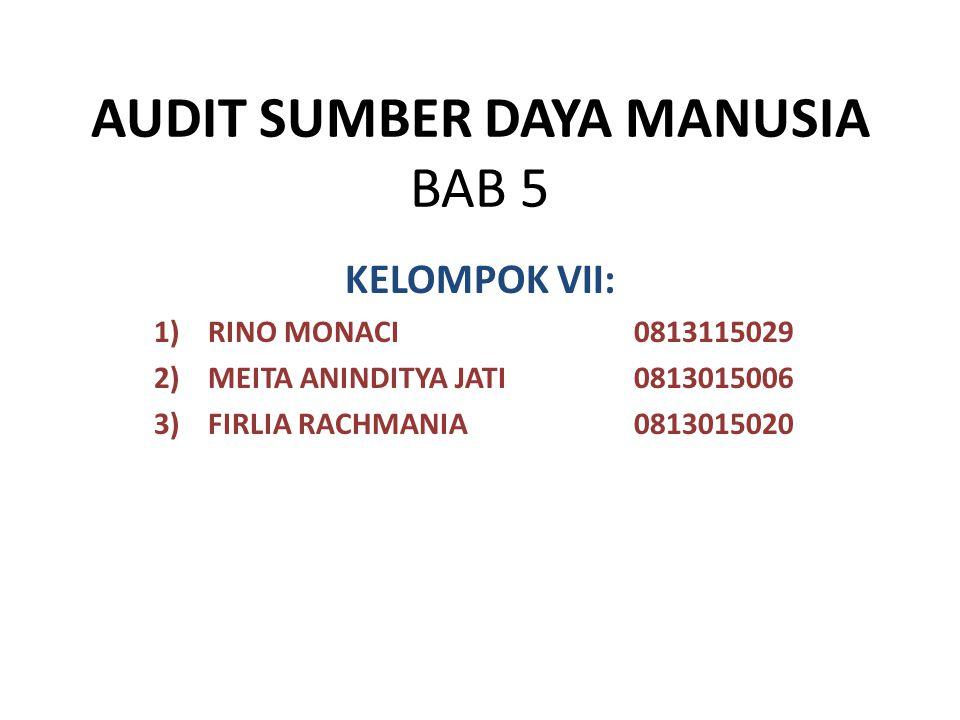 AUDIT SUMBER DAYA MANUSIA BAB 5