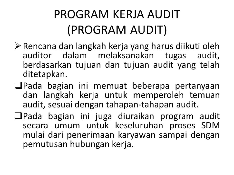 PROGRAM KERJA AUDIT (PROGRAM AUDIT)