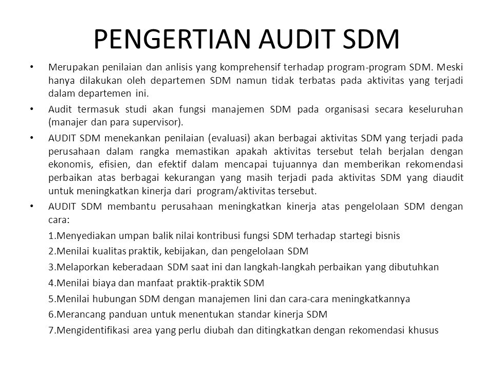 PENGERTIAN AUDIT SDM