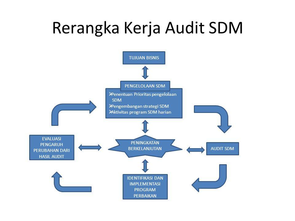 Rerangka Kerja Audit SDM