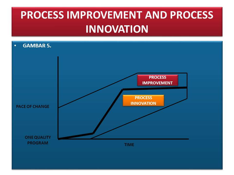 PROCESS IMPROVEMENT AND PROCESS INNOVATION