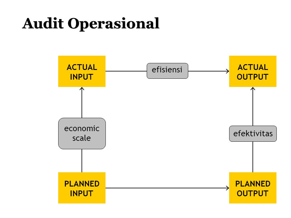 Audit Operasional ACTUAL INPUT PLANNED INPUT ACTUAL OUTPUT