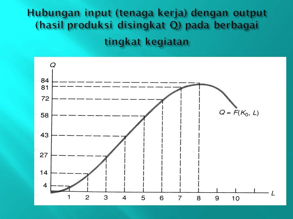 Hubungan input (tenaga kerja) dengan output (hasil produksi disingkat Q) pada berbagai tingkat kegiatan