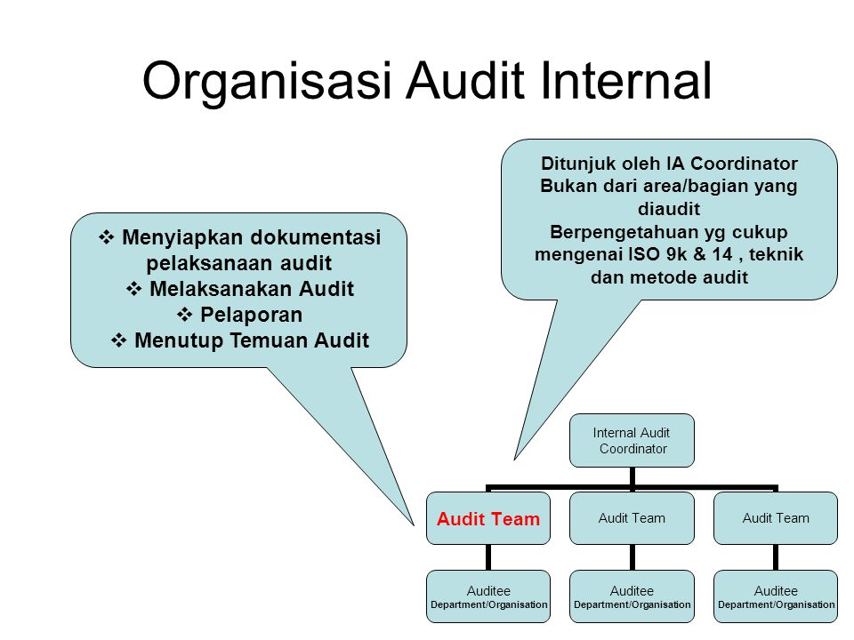 Organisasi Audit Internal