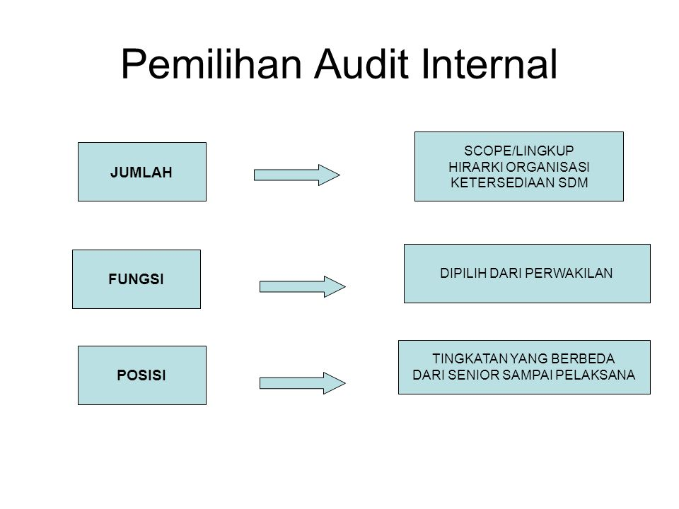 Pemilihan Audit Internal