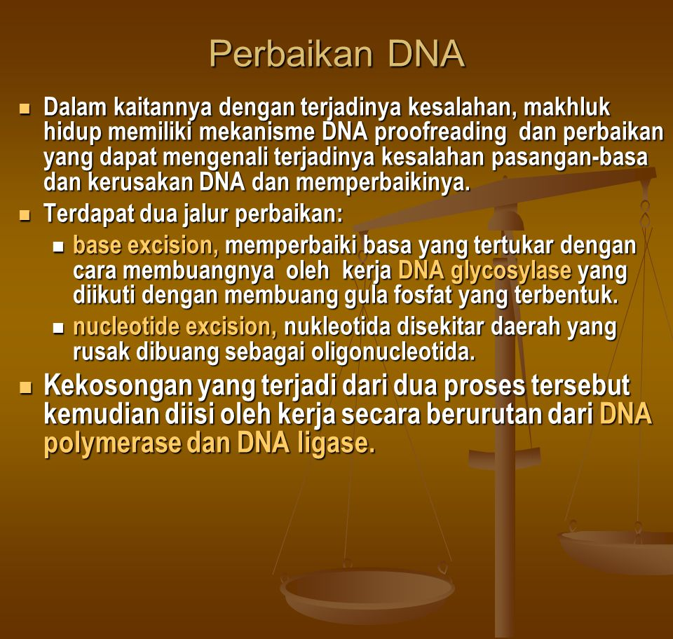 Perbaikan DNA