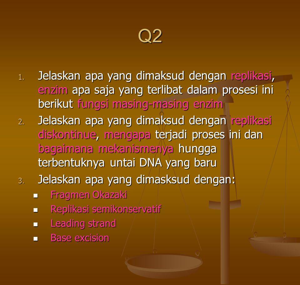 Q2 Jelaskan apa yang dimaksud dengan replikasi, enzim apa saja yang terlibat dalam prosesi ini berikut fungsi masing-masing enzim.