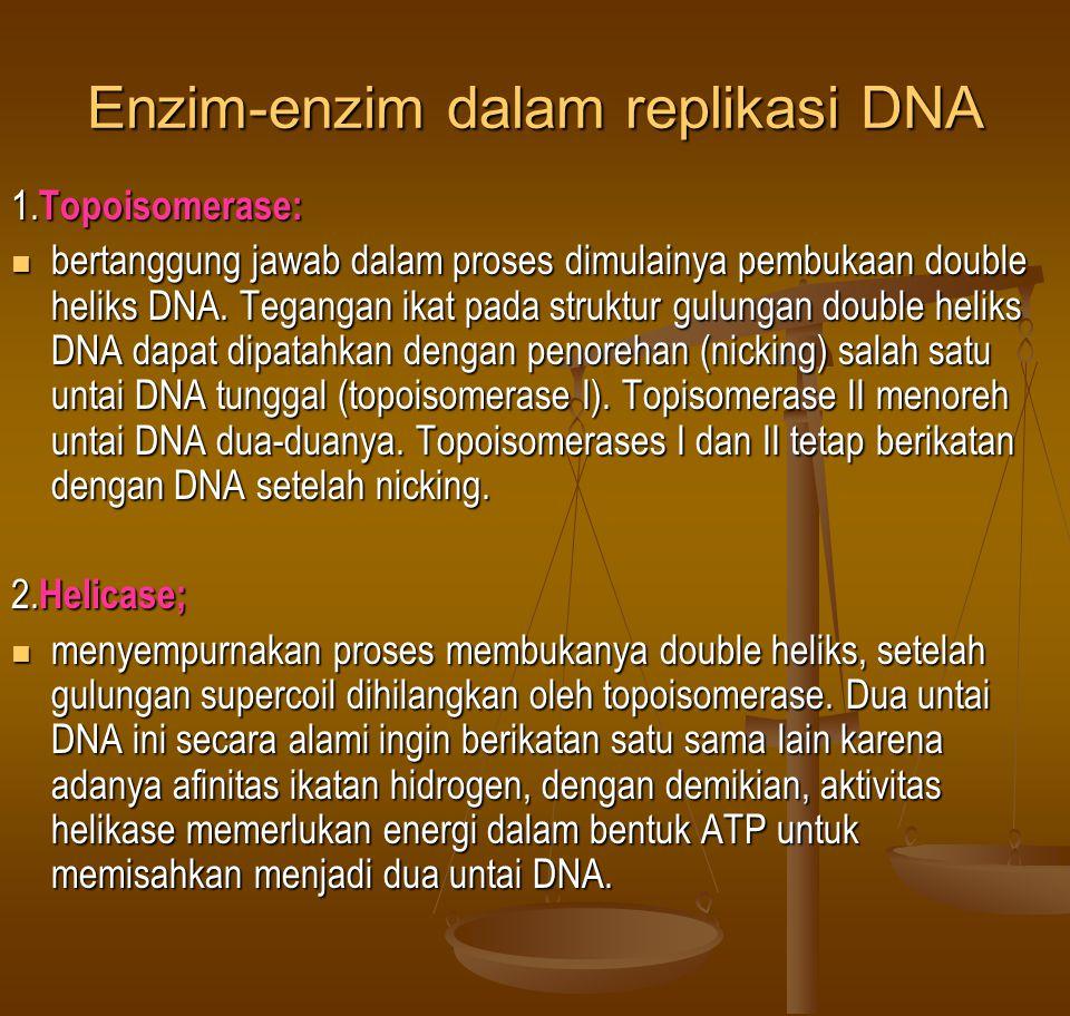 Enzim-enzim dalam replikasi DNA
