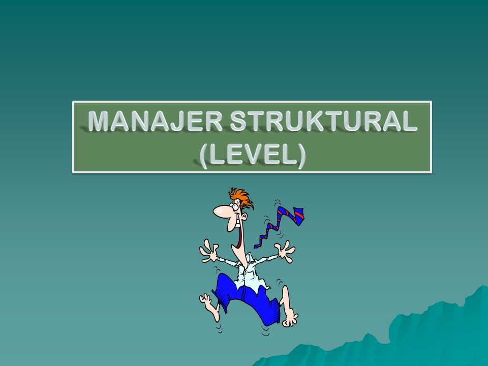 MANAJER STRUKTURAL (LEVEL)