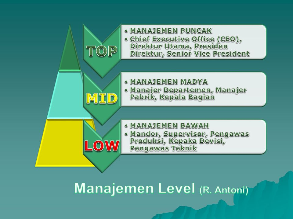 Manajemen Level (R. Antoni)