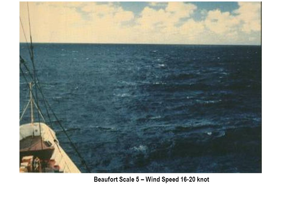 Beaufort Scale 5 – Wind Speed 16-20 knot