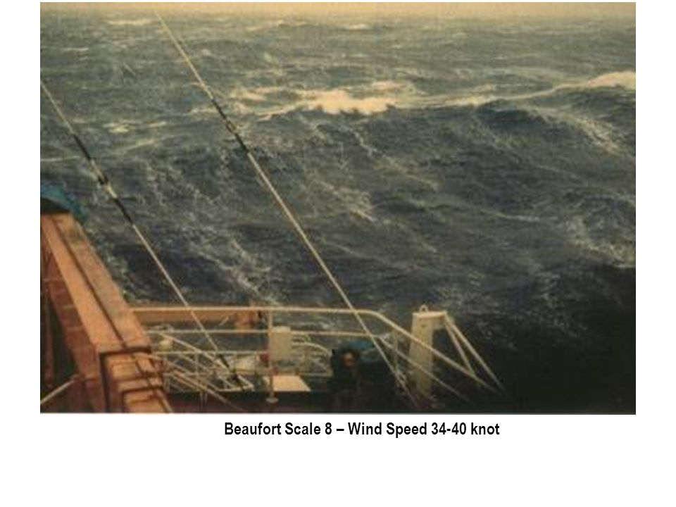 Beaufort Scale 8 – Wind Speed 34-40 knot