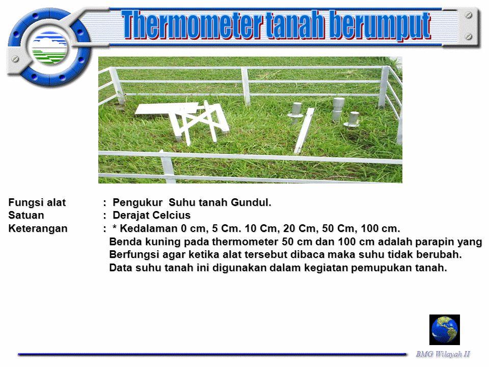 Thermometer tanah berumput