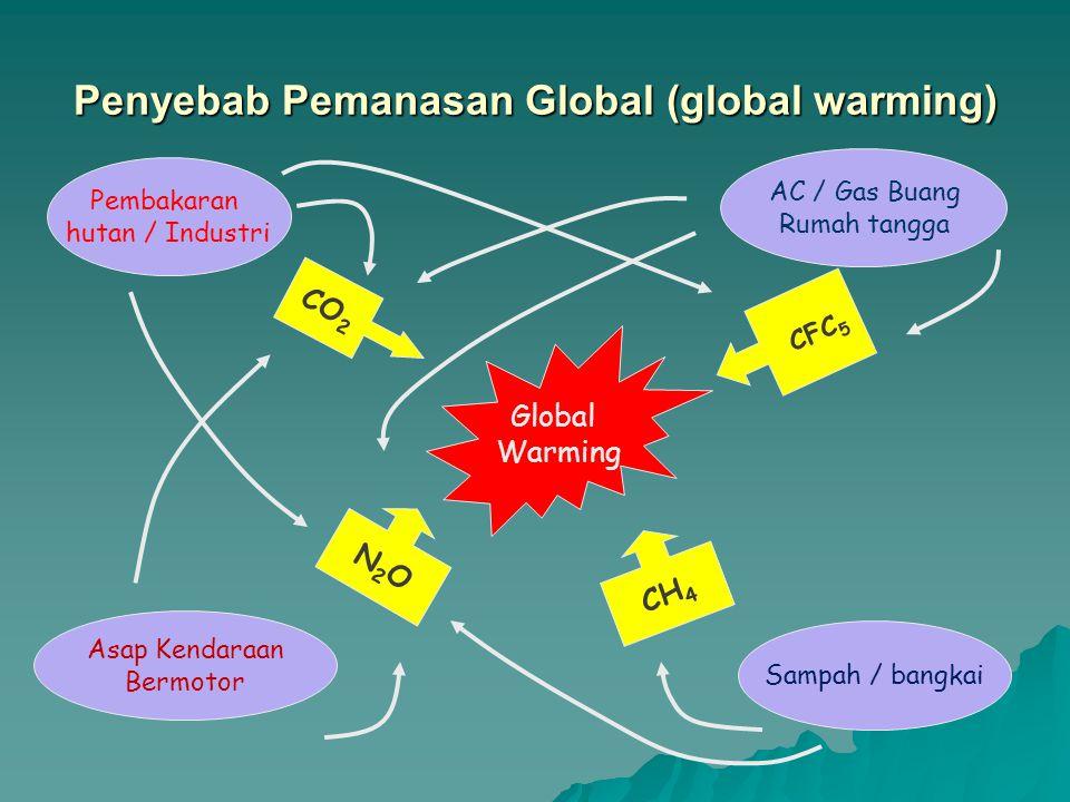 Penyebab Pemanasan Global (global warming)