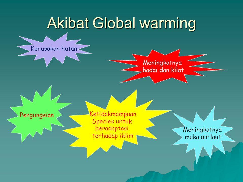 Akibat Global warming Meningkatnya badai dan kilat Kerusakan hutan