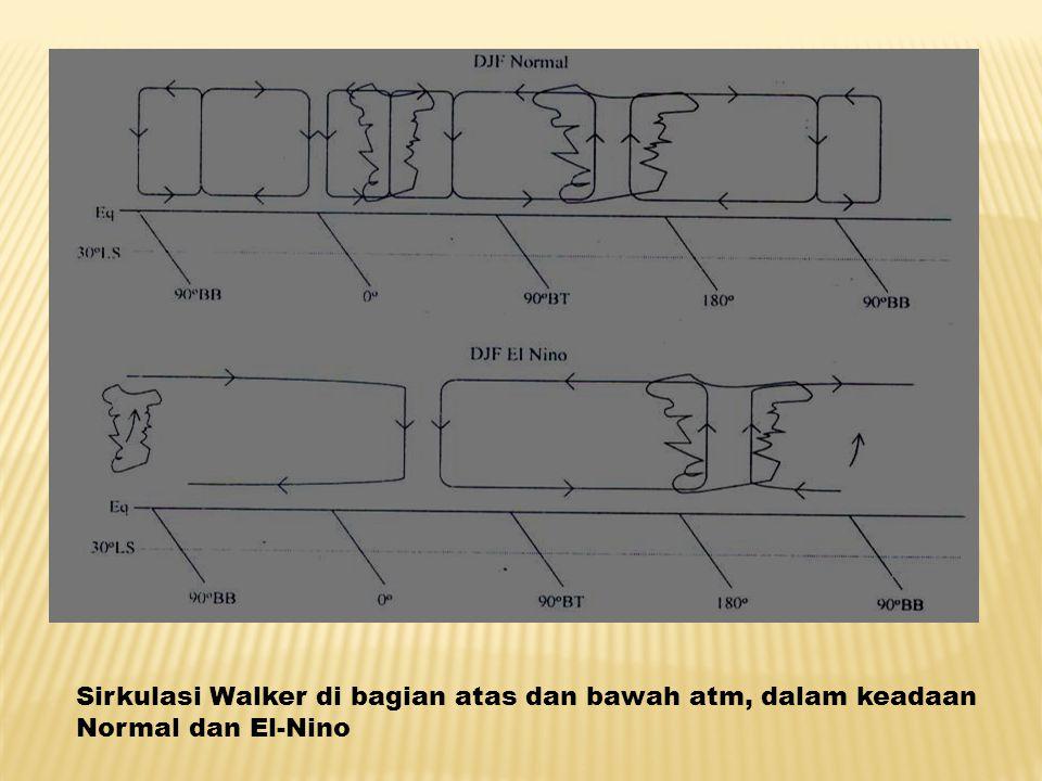 Sirkulasi Walker di bagian atas dan bawah atm, dalam keadaan