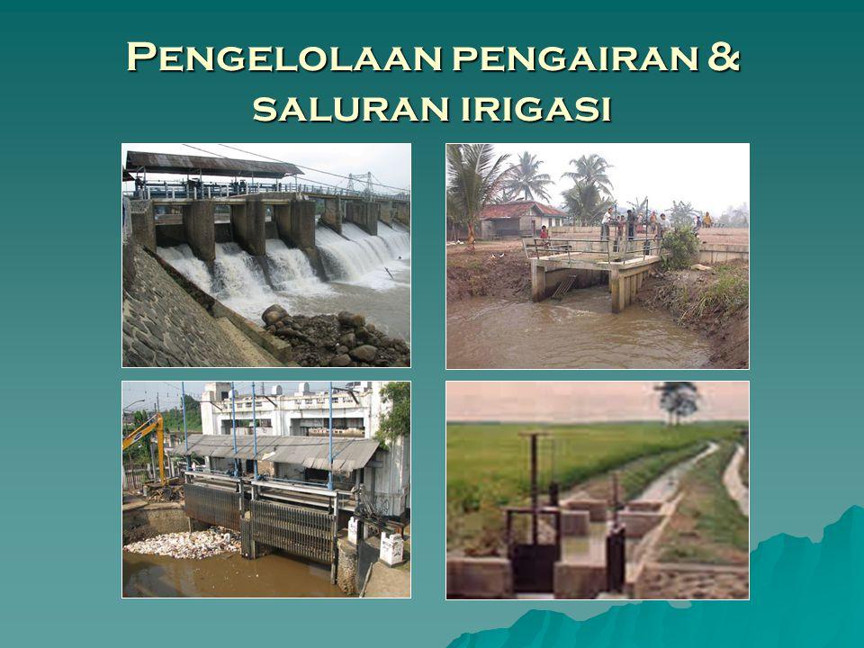 Pengelolaan pengairan & saluran irigasi