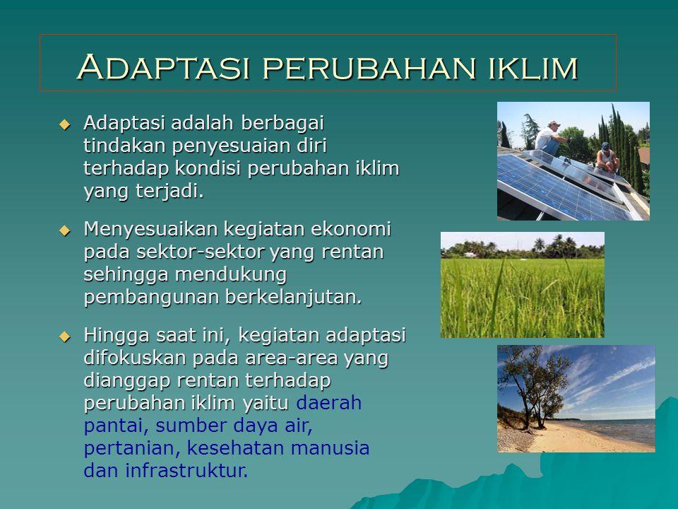 Adaptasi perubahan iklim