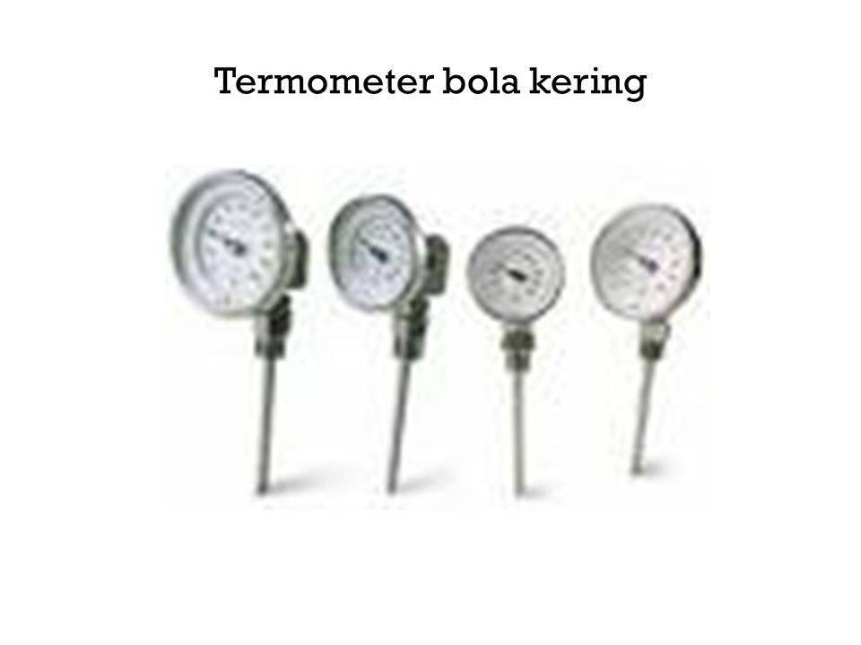 Termometer bola kering