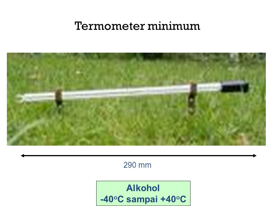 Termometer minimum 290 mm Alkohol -40oC sampai +40oC