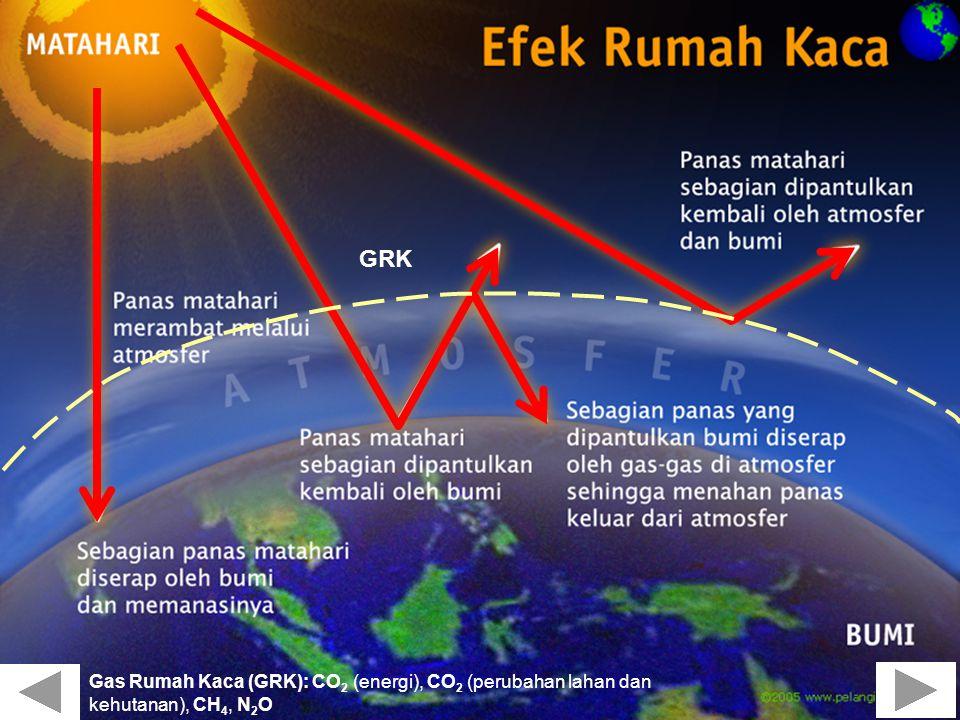 GRK Gas Rumah Kaca (GRK): CO2 (energi), CO2 (perubahan lahan dan kehutanan), CH4, N2O 80