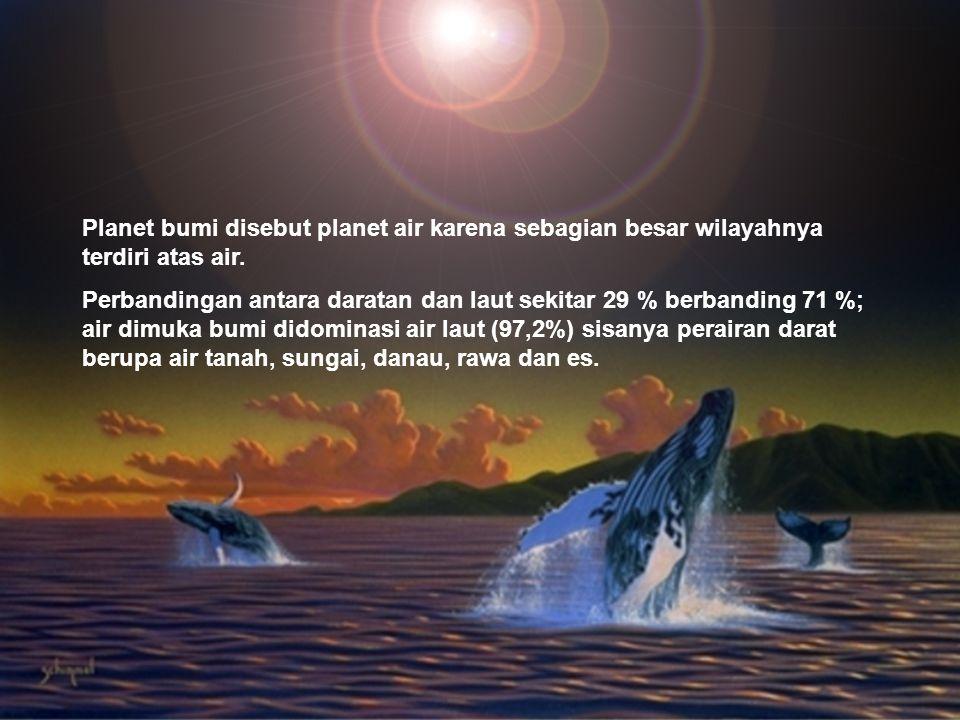Planet bumi disebut planet air karena sebagian besar wilayahnya terdiri atas air.