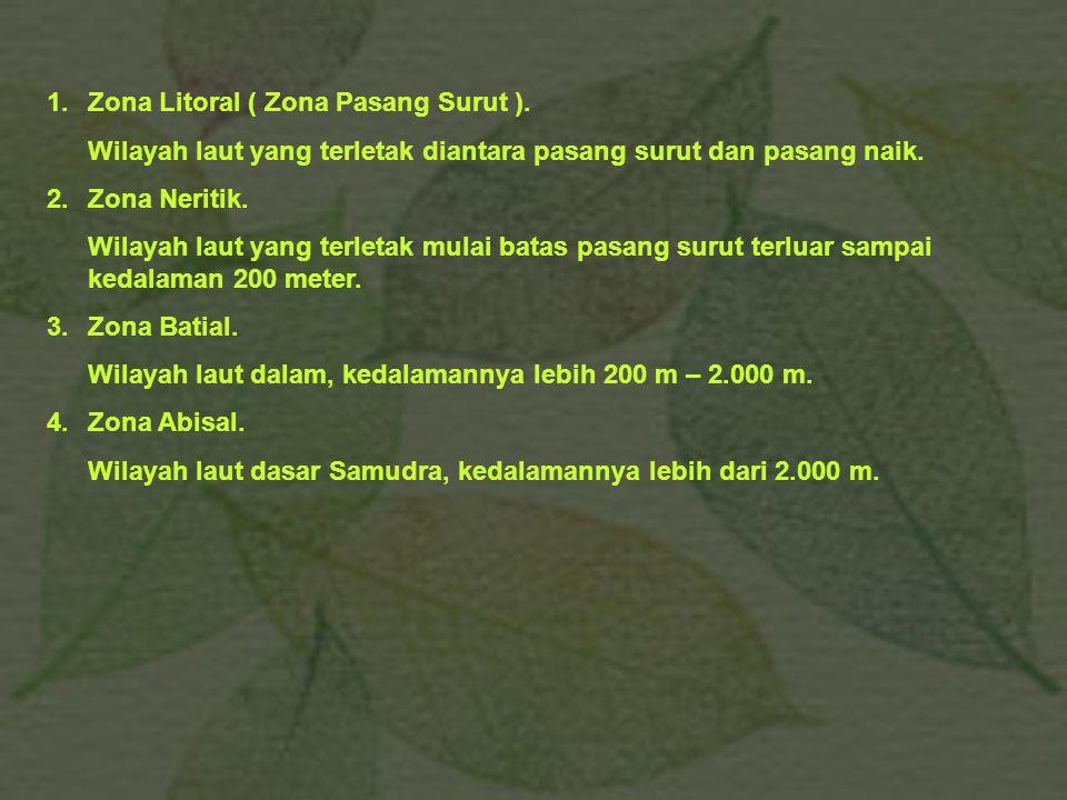 1. Zona Litoral ( Zona Pasang Surut ).