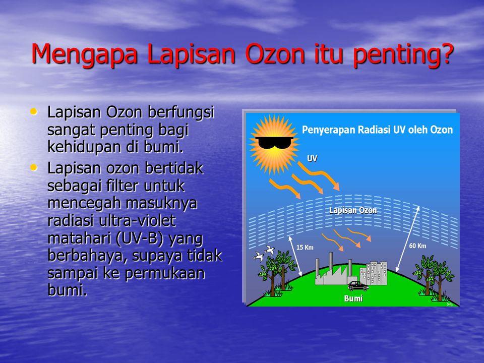 Mengapa Lapisan Ozon itu penting