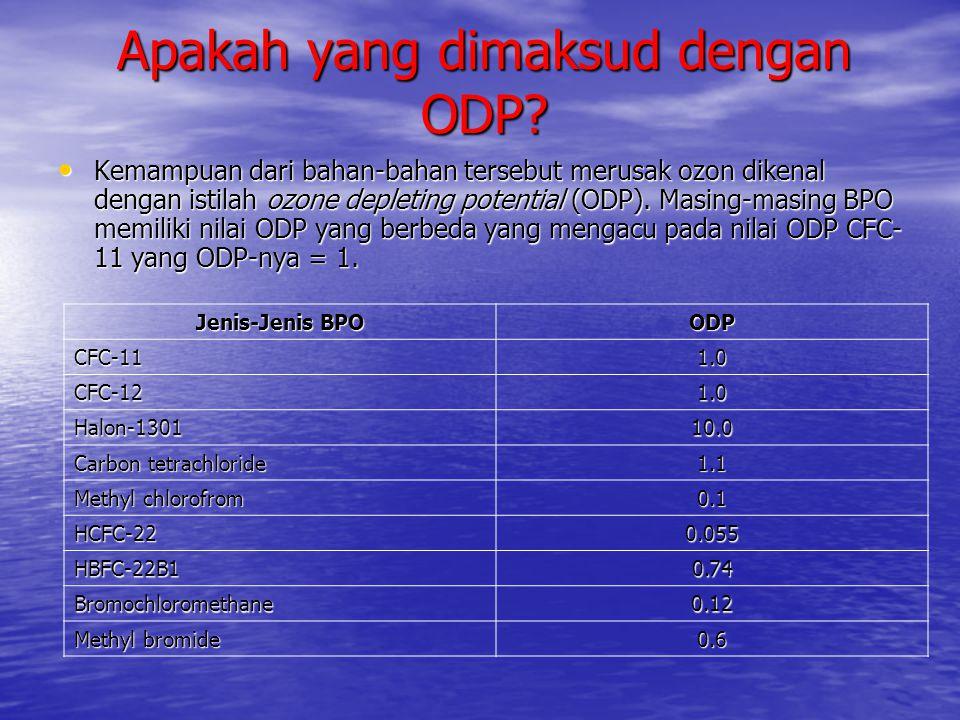 Apakah yang dimaksud dengan ODP